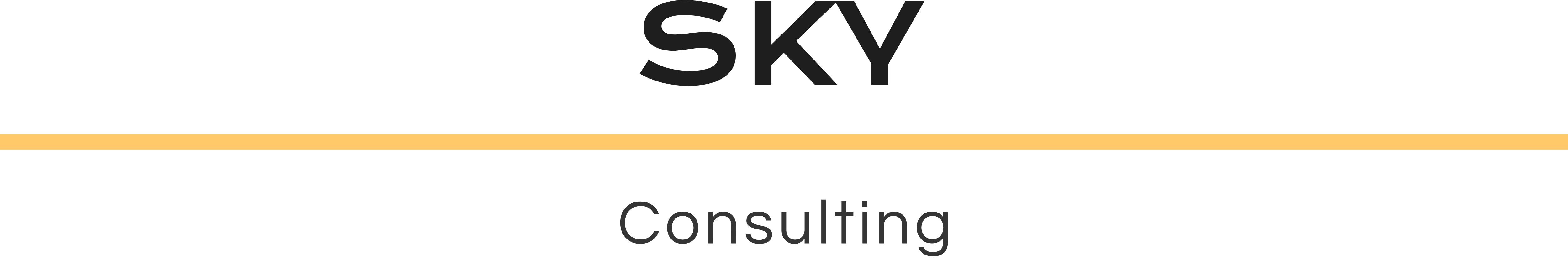 SKY consulting